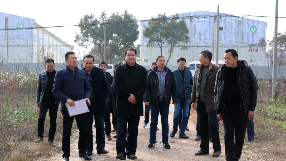 王庆武视察指导农业和农村工作